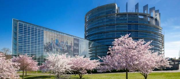 Sesja Plenarna w Strasburgu
